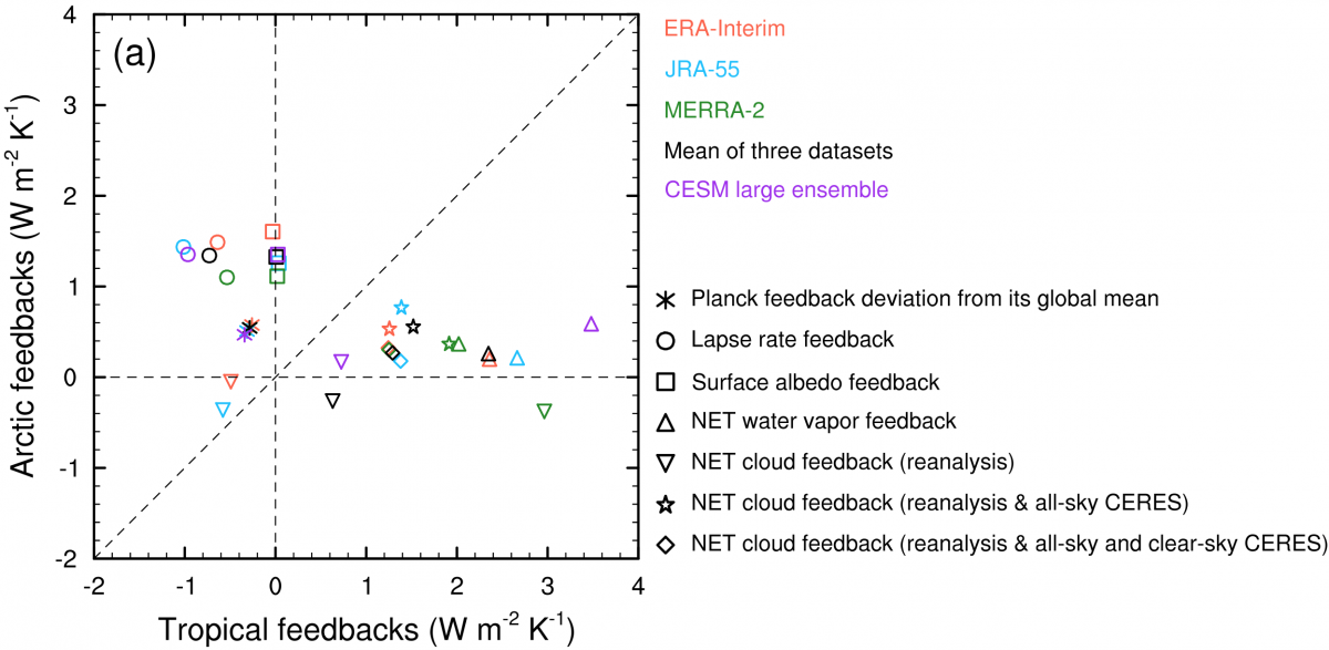 Quantifying The Arctic Local Radiative Feedbacks Based On Observed