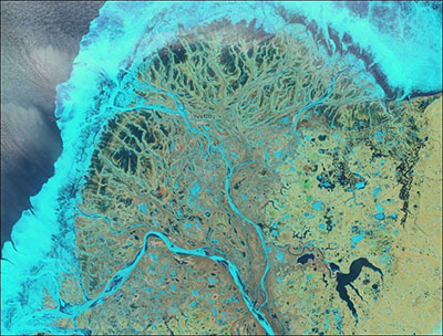 This image of Alaska's Yukon Delta shows extensive ice cover in the delta channels, lakes, and near the delta shoreline. This ice cover affects how water, sediment, and nutrients get routed to the coast.